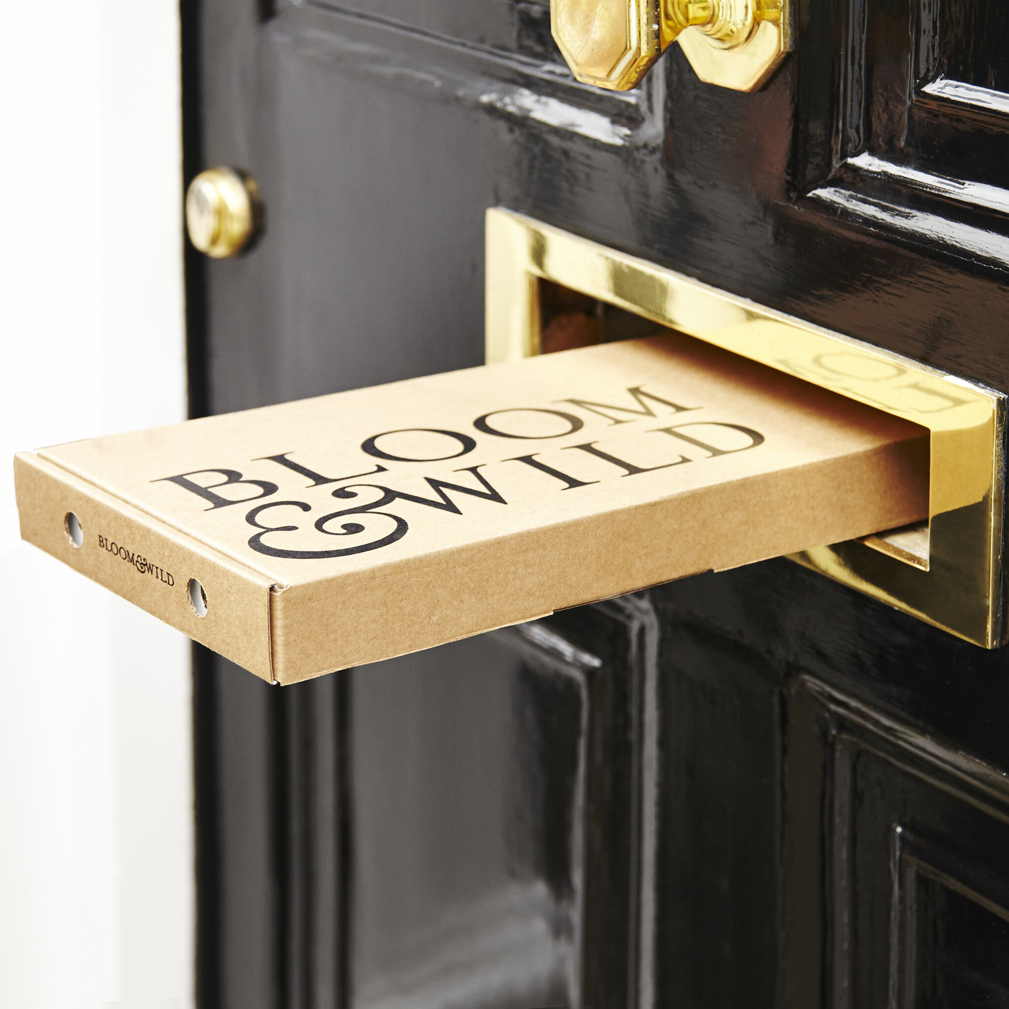 Copy of Letterbox + Door 4